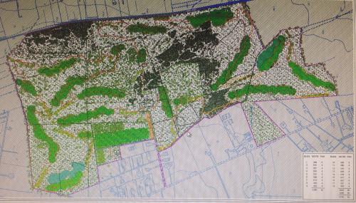 Il progetto del campo da golf in zona Betania