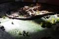 museo archeologico di oria e dei messapi 44