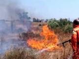 Volontari Protezione civile spengono incendio-2