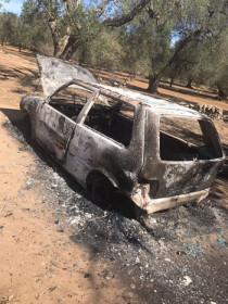 auto bruciate 2