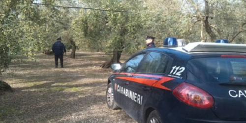 carabinieri campagna auto rubata