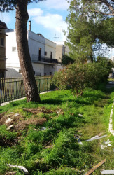 giardino rogazionisti san pasquale oria 4